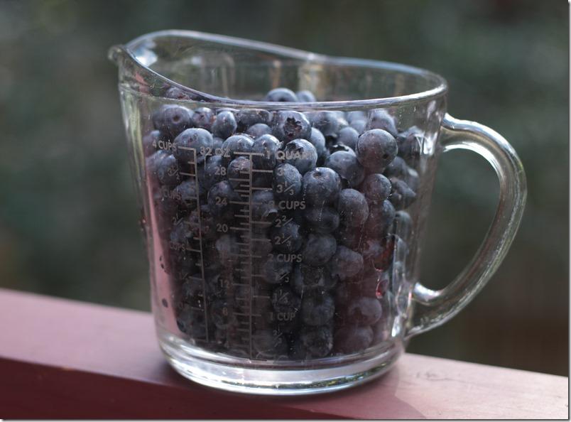 Blueberry Cobbler (1 of 8)